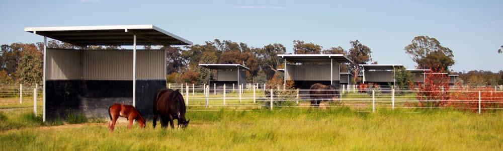 Idyllic surroundings with ample pasture
